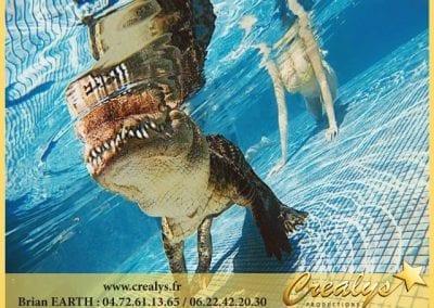 Crocodile Piscine Alligator
