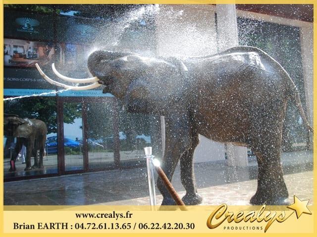 Douche Lavage Éléphant