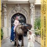 Location éléphant Vidéos Les Pavillons sous Bois