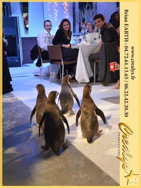 Inauguration batiment aigle rapace