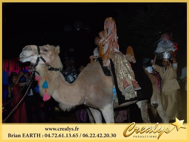 Mariage Dromadaire Oriental