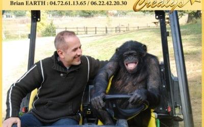 Location chimpanzé vidéos Athis Mons