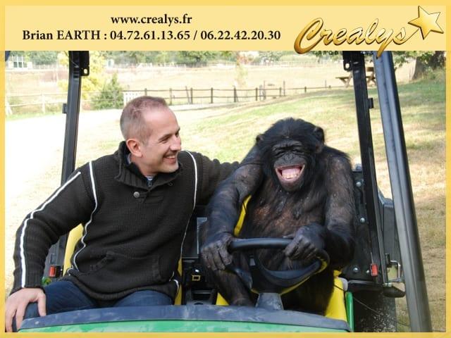 Location chimpanzé vidéos Roissy en Brie