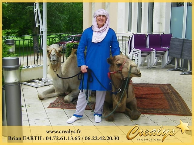 Louer des dromadaires ou chameaux