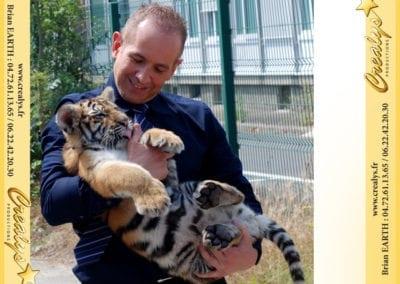 Tigrou le bébé tigre