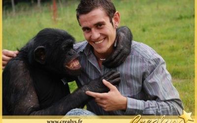 Location chimpanzé vidéos Saint Estève