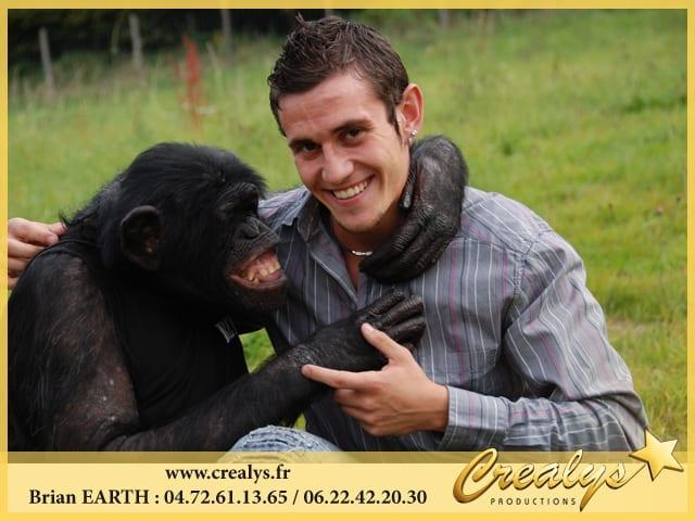Louer un singe chimpanzé