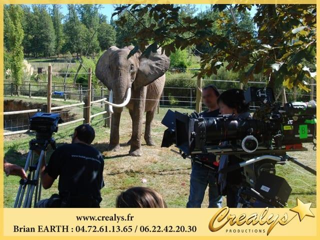 Tournage éléphant