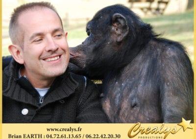 Singe Chimpanzé bisous