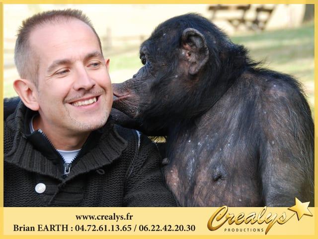Complicité bisou chimpanzé