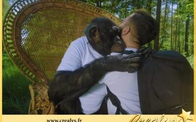 Location chimpanzé vidéos La Garde