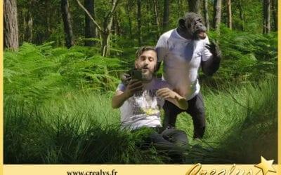Location chimpanzé vidéos Cesson Sévigné