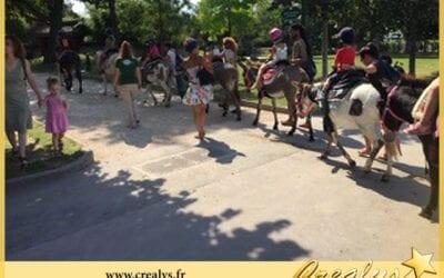 Location ane poney vidéos Vaux le Pénil